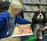 Photo of Albie the dog and a girl reading at the library