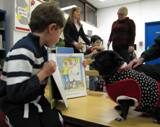 Ava the dog gets a close look at a book at the library