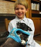 Photo of Ava the dog with a boy