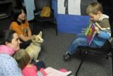 Photo of Bailey the dog hearing a story at the library