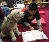 Photo of Champ the dog reading with a boy