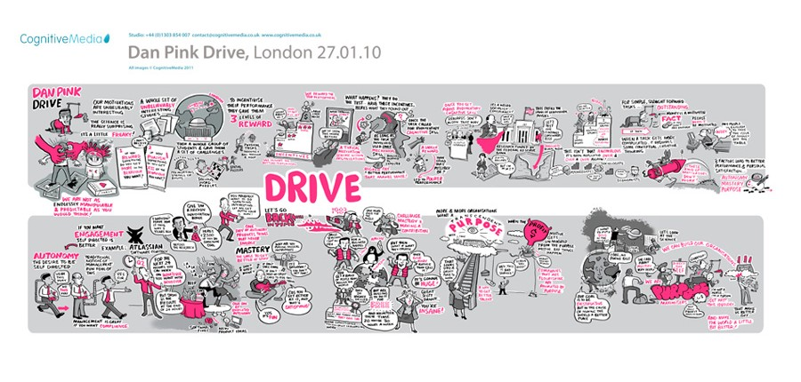 Drive : The Surprising Truth about What Motivates Us by Daniel H. Pink (2009,...
