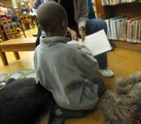 Photo of Ella the dog hearing a story at the library