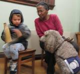 Photo of Ella the dog reading with a boy at the librry