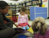 Photo of Ella the dog listening to a story at the library