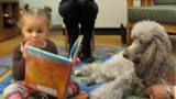 Photo of Ella the dog reading with a girl