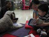 Photo of Ella the dog reading at the library