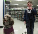 Photo of Ella the dog going for a walk with a boy