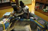 Photo of Freddie the dog reading with two girls at the library