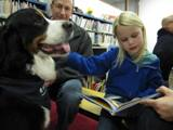 Photo of Gus the dog reading with a family