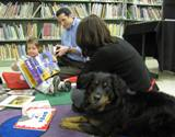 Photo of Happy the dog reading at the library