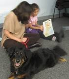 Photo of Happy the dog listening to a story at the library