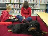 Photo of Happy the dog listening a boy read at the library