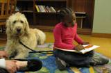 Photo of Harpo the dog reading with a girl