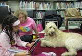 Photo of Harpo the dog listening to a story at the library