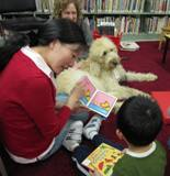 Photo of Harpo the dog and family reading