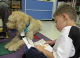Photo of Harpo the dog reading with a boy