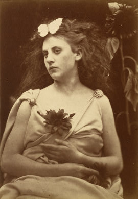 The Sunflower by Julia Margaret Cameron