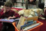 Photo of a boy reading to Leo the dog