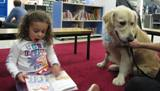 Photo of Leo the dog and a girl reading