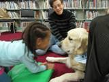 Photo of Leo the dog at the library nose to nose with a little girl