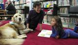 Photo of Leo the dog listening to stories at the library