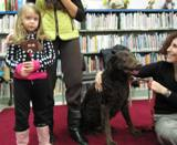 Photo of Max the dog at the library