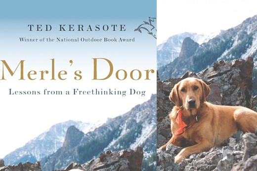 cover photo of Merle's Door
