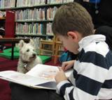 Nessie the dog reading with a boy at the library