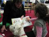 Photo of Nessie the dog reading with a girl at the library