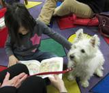 Nessie the dog with a girl at the library