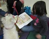 Nessie the dog enjoying a story with a girl at the library