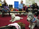Photo of Nessie the dog and Nola and a stuffed dog at the library