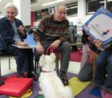 Photo of Nessie the dog reading at the library