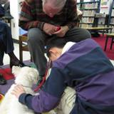 Photo of Nessie the Dog reading with a boy