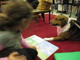 Photo of Nola the dog with a girl at the library