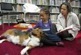 Photo of Nola the dog relaxing at the library