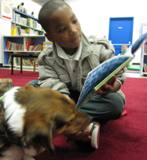 Photo of Nola the dog reading with a boy at the library
