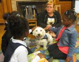 Photo of Pablo the dog enjoying some attention at the library