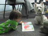 Photo fo Pablo the dog listening to a boy read at the library