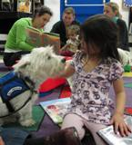 Pablo the dog at the library giving a girl a kiss