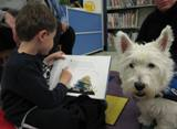 Photo of Pablo the dog reading at the library