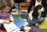 Photo of Pup-a-Roo the dog reading a the library