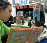 Photo of Pup-a-Roo the dog hearing a story at the library