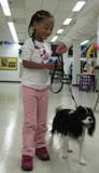 Photo of Quincy the dog going for a walk in the library