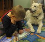 Photo of Snowball the dog listening to a story at the library