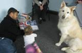 Photo of Snowball listening to a story at the library