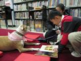 Photo of Susie the dog reading Superdog book with a boy