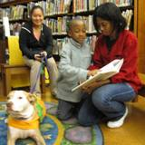 Photo of Suzie the dog listening to a story at the library