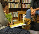 Photo of Trudy the dog listening to story at the library